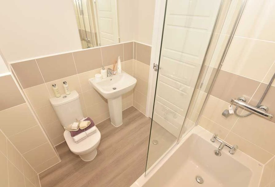 Rochester bathroom
