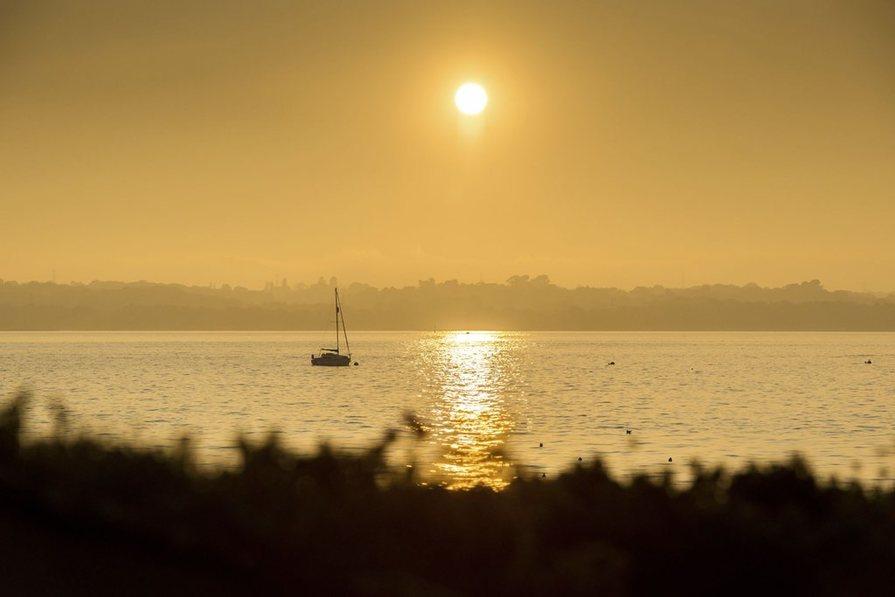 swanwick marina
