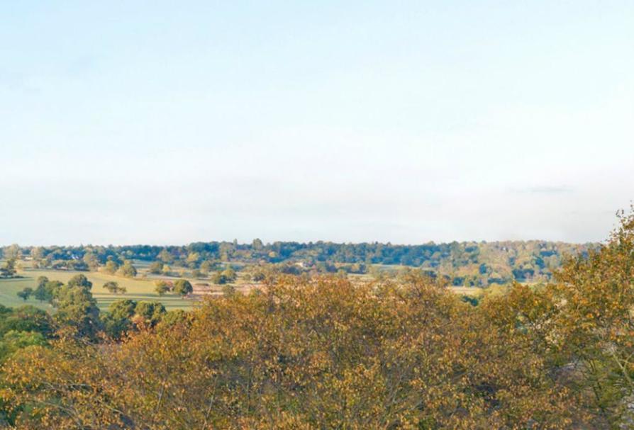 Ridgeway Views