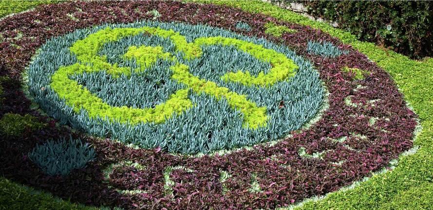 Berkeley, Wye Dene, High Wycombe, Baden Powell Flowers