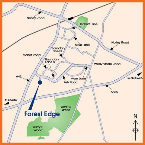 Forest Edge in Sandiway