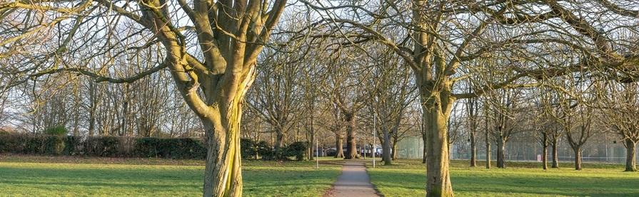 Image of The Lavenham