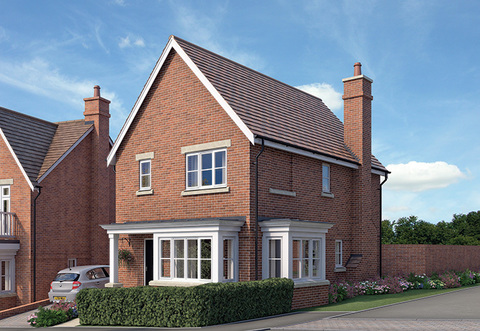 The Forest - Plot 085-HelptoBuy