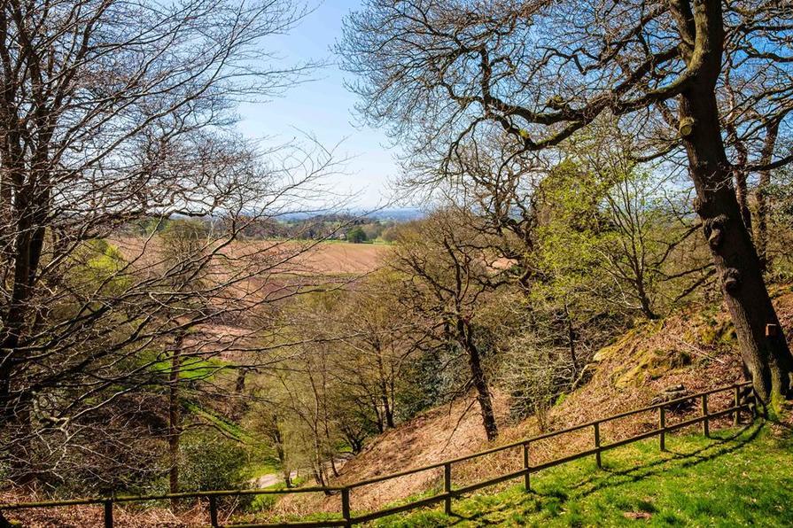 Drayton Meadows