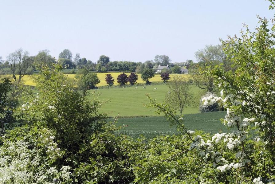 Kibworth is surrounded by beautiful Leicestershire countryside