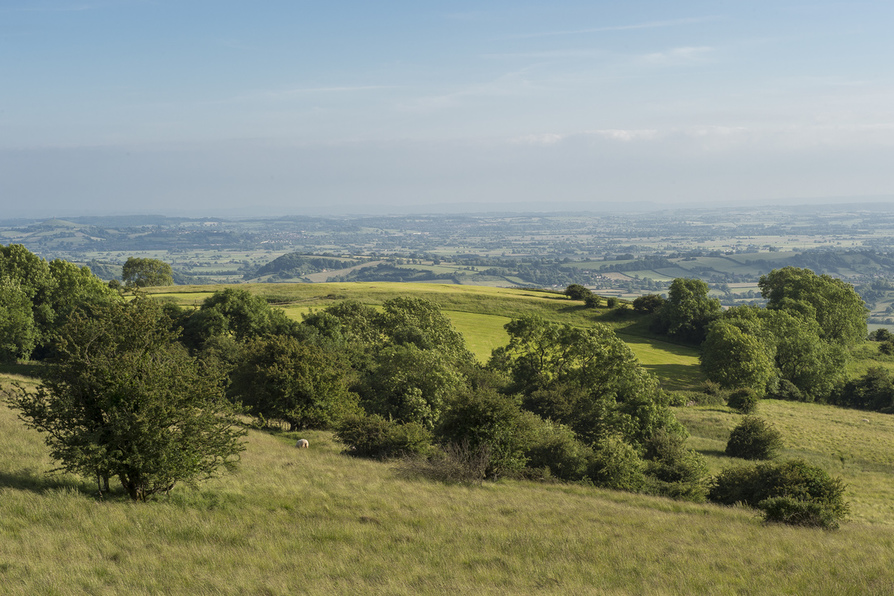View from The Quantock Hills
