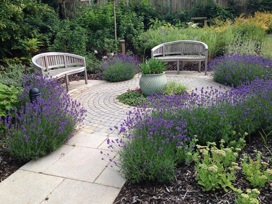 Typical landscaped garden
