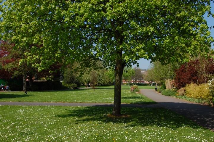 St Thomas' Park Exeter