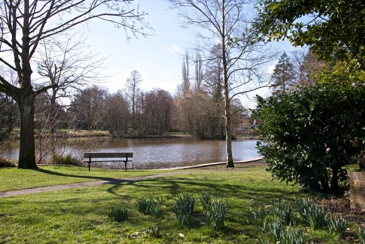 Midhurst Local Area