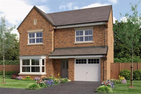 The Ryton - Plot 49