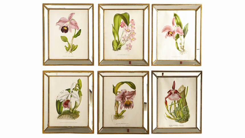 Orchid prints with mirrored frames