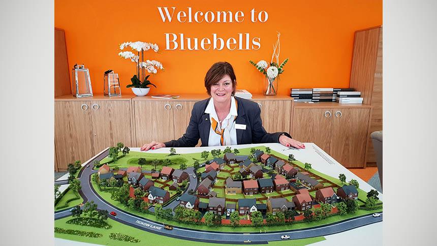 Bluebells (William Davis Homes)
