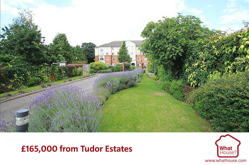 165K from Tudor Estates