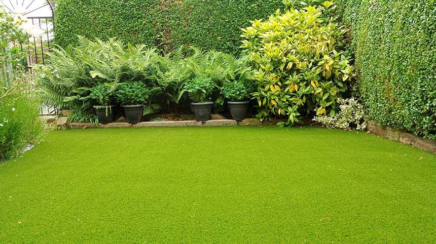 artificial turf (Gerry Burrows)