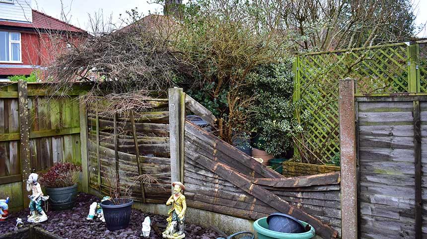 broken garden fencing (Anthony Photography)