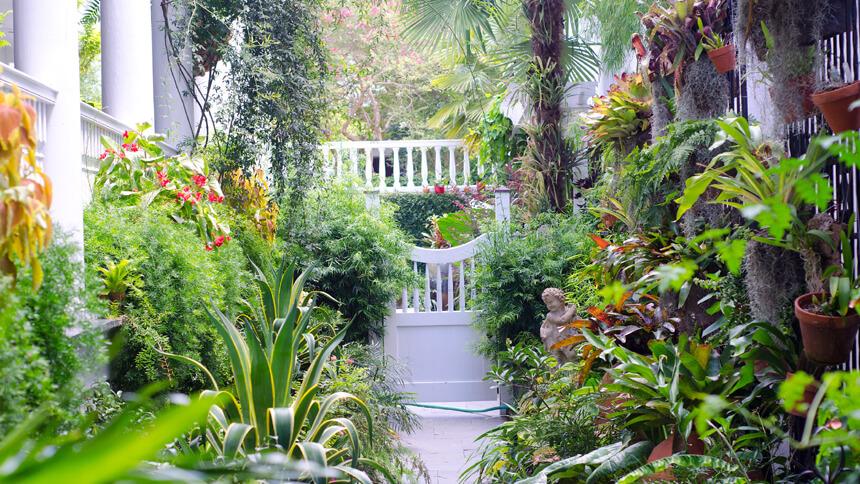 A well-designed front garden