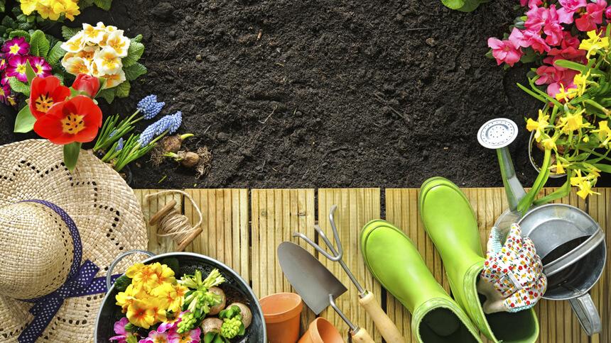 Get green this National Gardening Week