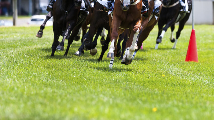 The Grand National takes place this weekend