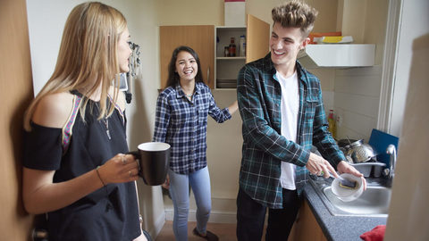 Finding the perfect housemate