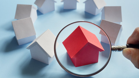What is a property search?