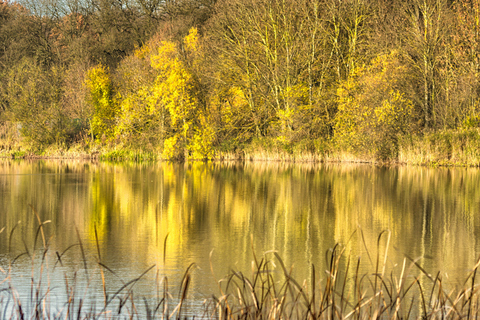 Hinchingbrooke Country Park