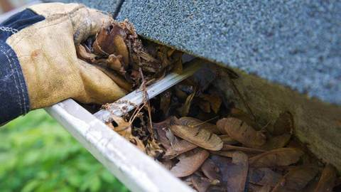 Essential roof maintenance