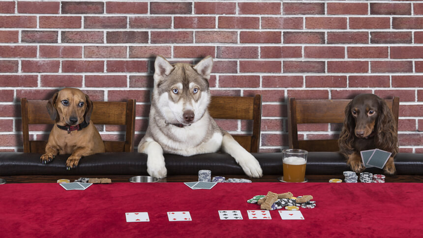 Get your poker face on