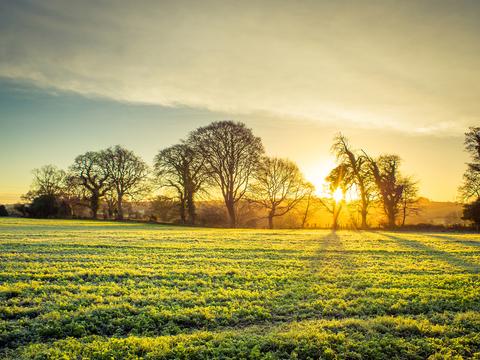 Chippenham, Wiltshire SN15