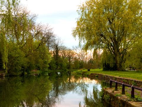Shavington, Staffordshire CW2