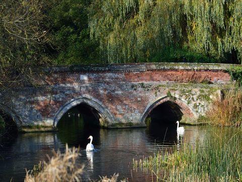 Hadleigh, Suffolk IP7
