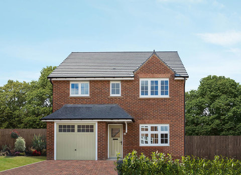 Shrewsbury - Plot 141