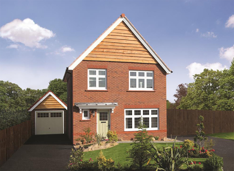 Warwick TF - Plot 28