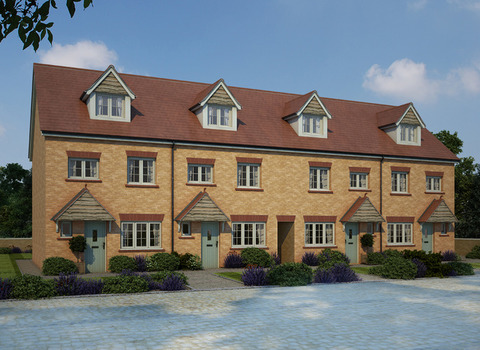 Kenilworth Special - Plot 335