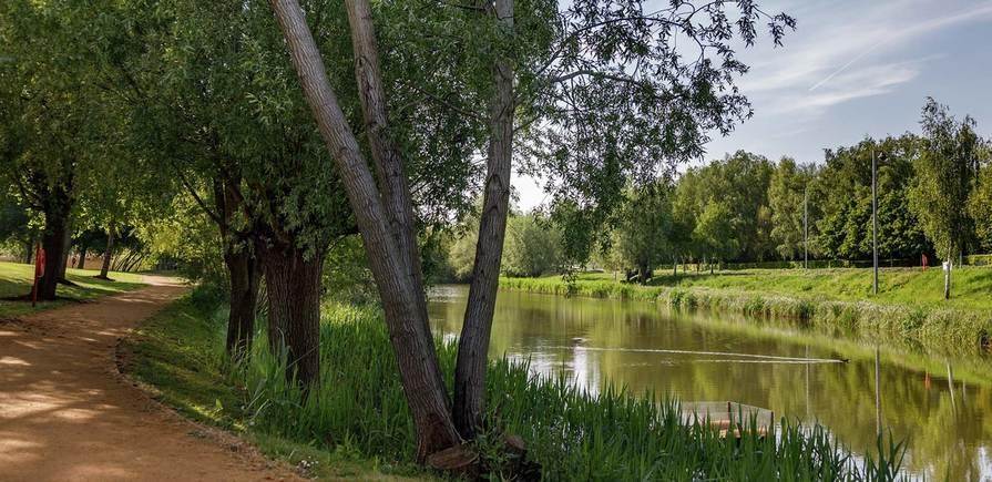St Edward, Green Park Village, Local Area, Landscape