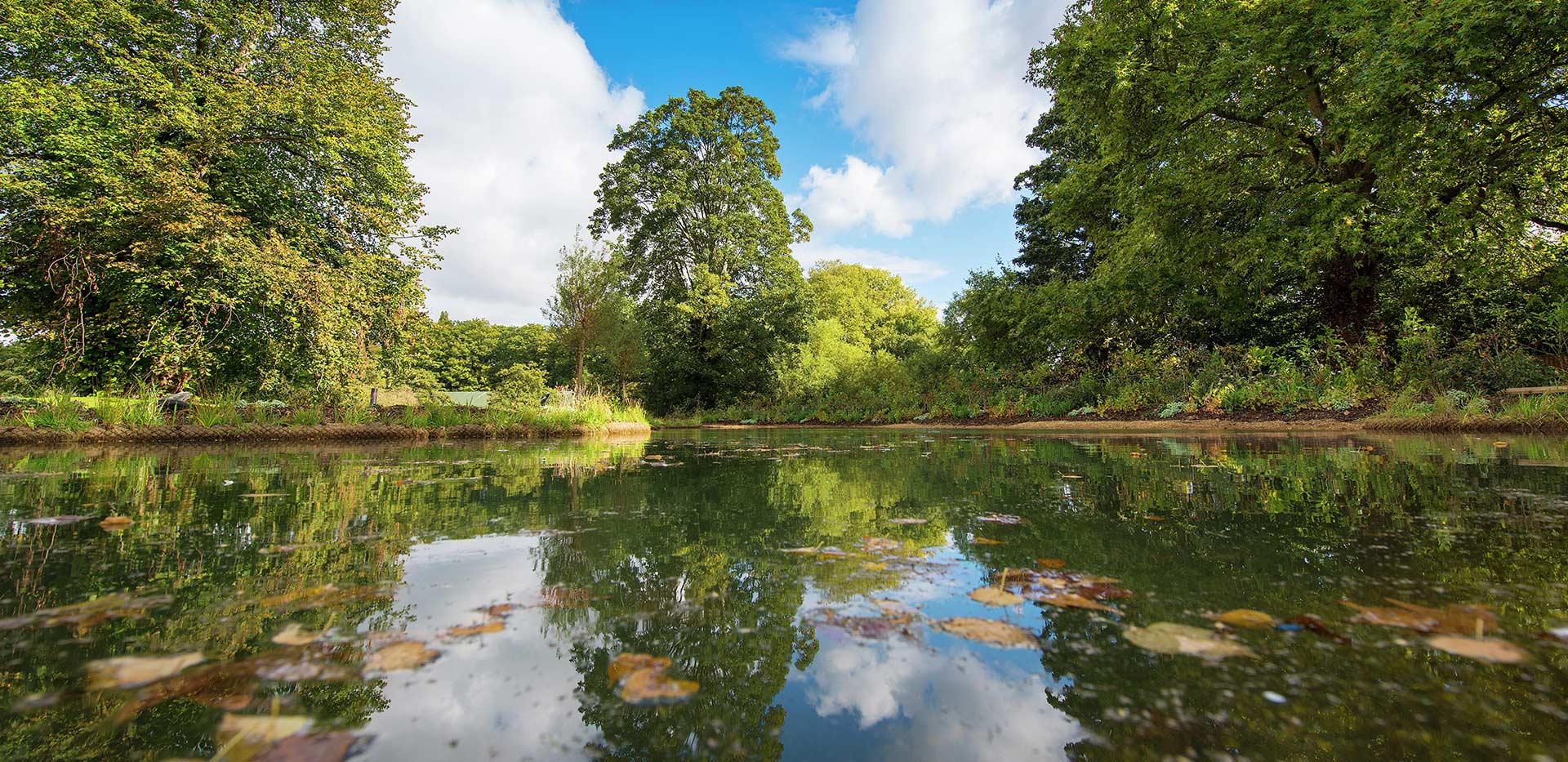St James, Fitzroy Gate, River, Mirror, Local Area